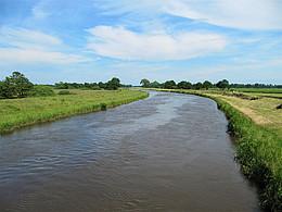 Das Bild zeigt eine Flussbiegung nach links in grünen Wiesen und unter blauem Himmel.