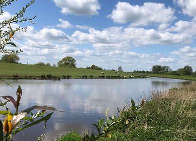 1 blauer Fluss zieht geschwungen seinen Weg durch grüne Landschaft mit Deichen