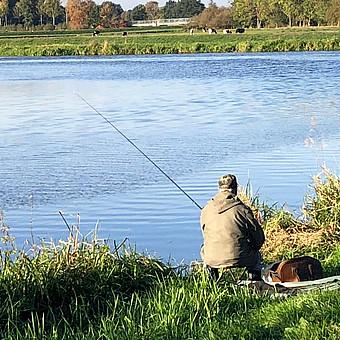 Einzelner Angler sitzend in beiger Kleidung am Fluss. Im Hintergrund grüne Wiesen, eine Brücke und Kühe.