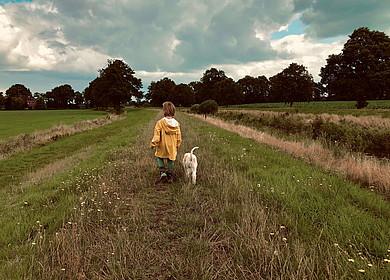 Rückansicht von einem Kleinkind mit einem weißen Hund geht auf einem Deich spazieren