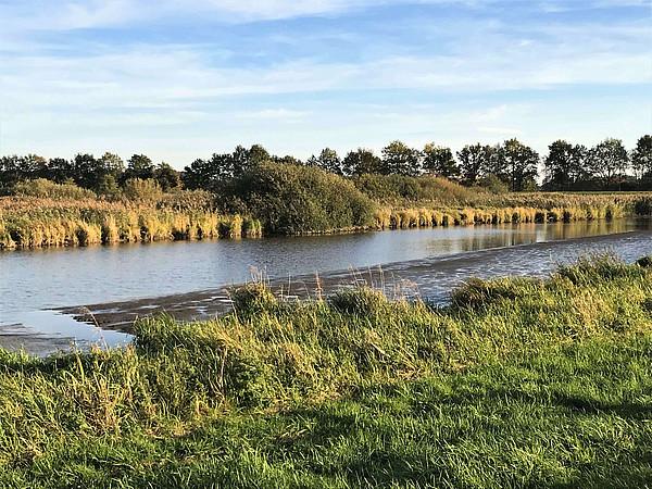 Das Bild zeigt den Fluss Aper Tief inmitten von Wiesen und Bäumen bei Ebbe.