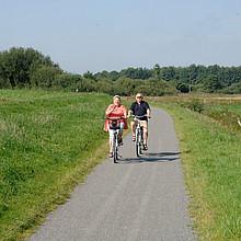 Das Foto zeigt ein Ehepaar von vorne, das auf Fahrrädern entlang des Deiches fährt.