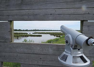 Blick durch den Sehschlitz einer Holzwand auf ein Naturschutzgebiet mit Wasser